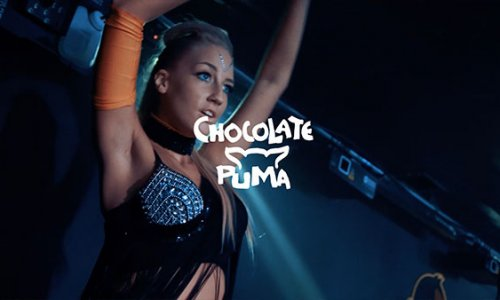 Chocolate Puma | MONKEY CLUB